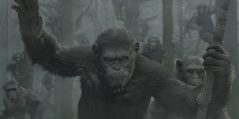 Dawn of the Planet of the Apes-Trailer-simian-flu-22