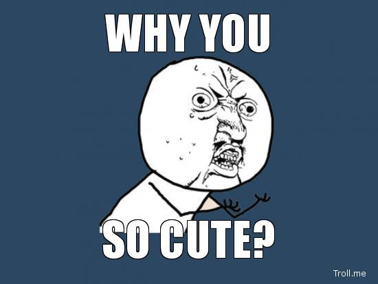 why-you-so-cute-meme