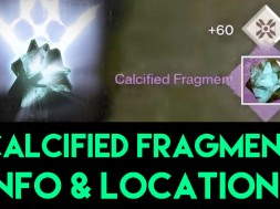 Calcified-fragment-Destiny-locations